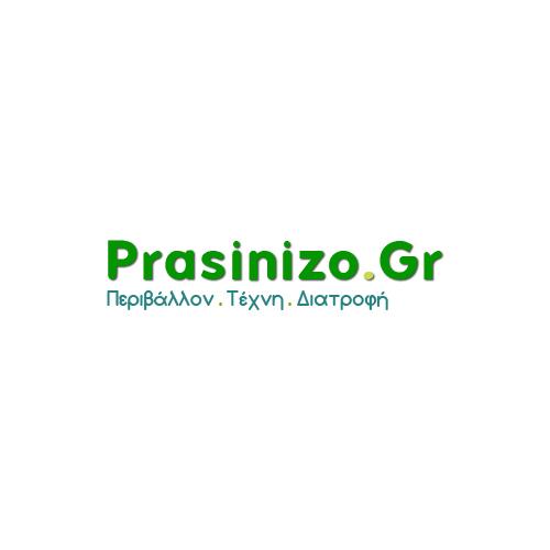 Prasinizo logo